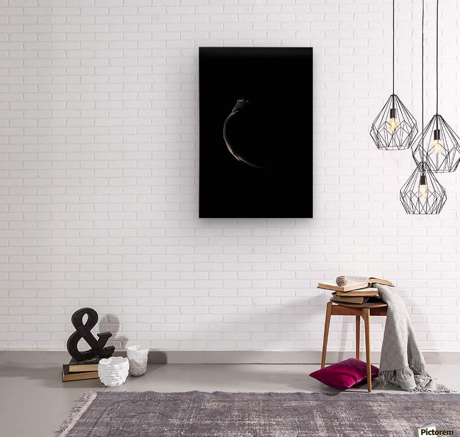 ***  Wood print