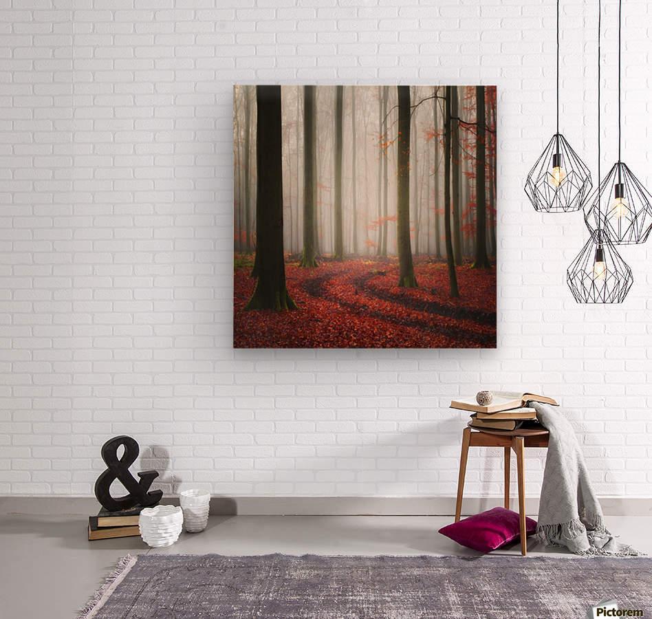 Autumnal Tracks  Wood print