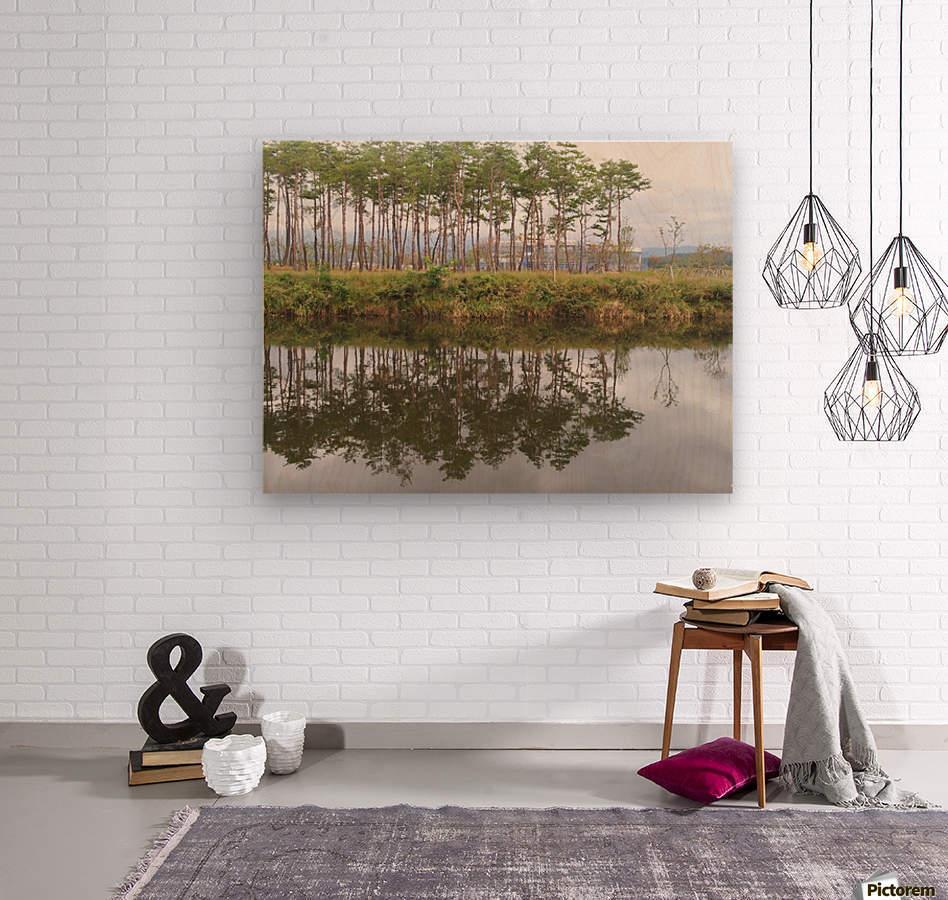 Sky, Water & Trees  Wood print