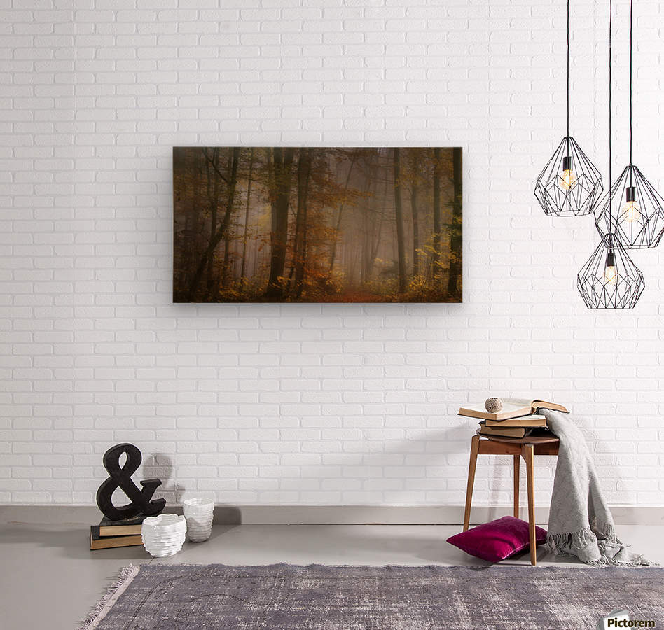 my november  Wood print