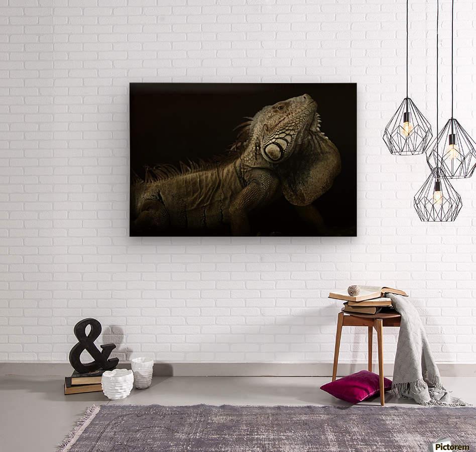 Iguana profile  Wood print