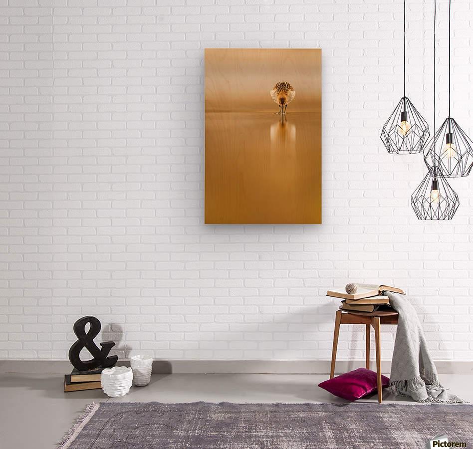 Dunlin reflection  Wood print