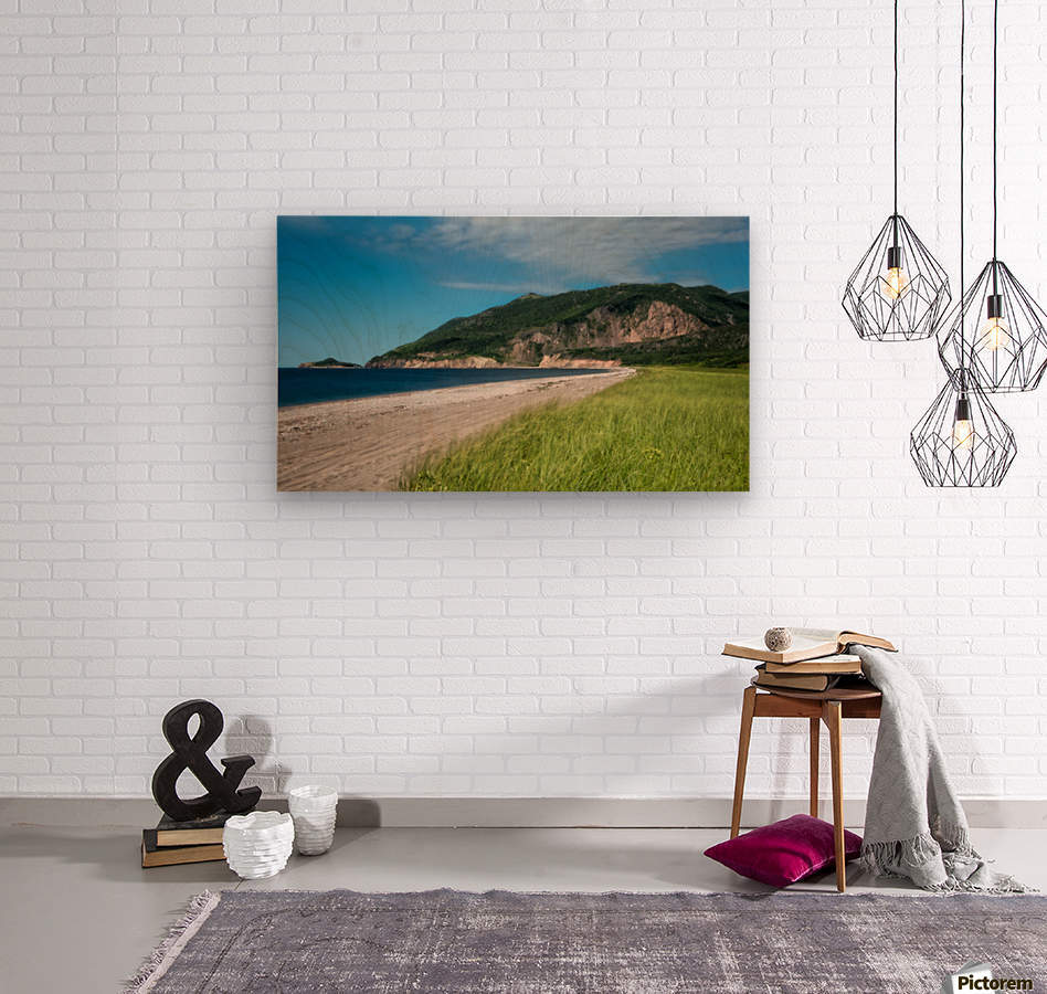 Petit Etang Beach Memories-2  Wood print