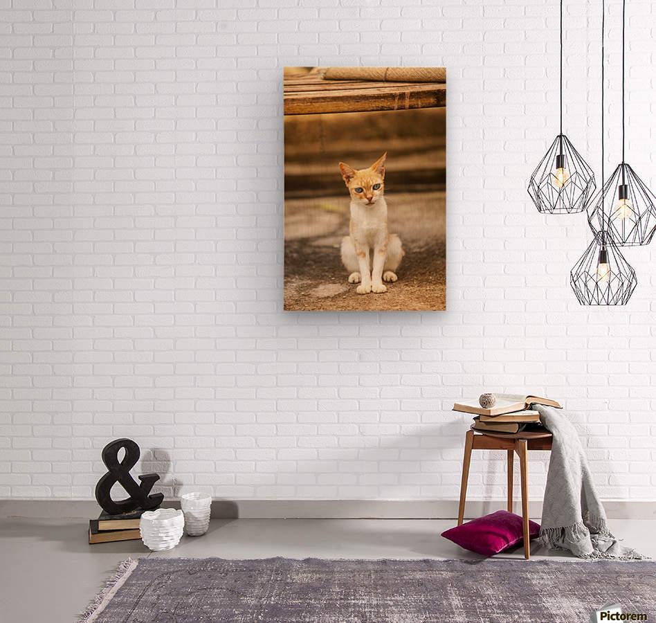 IMG_1320  Wood print