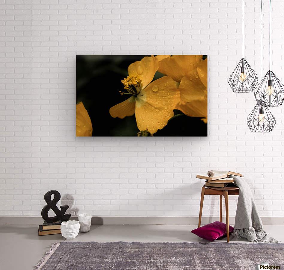 Butterfly Flower  Wood print