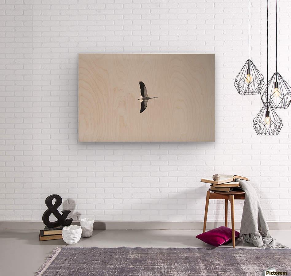 Accolade  Wood print