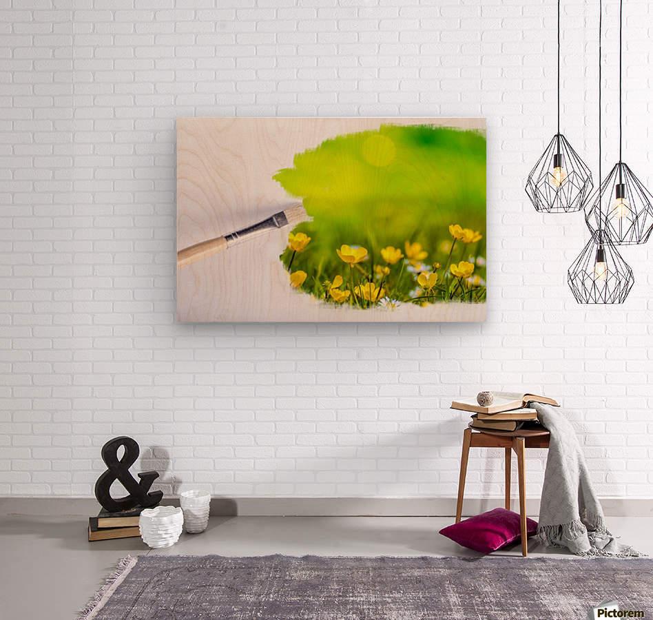 Paintbrush Outdoor Flower Flowers Sunlight  Wood print