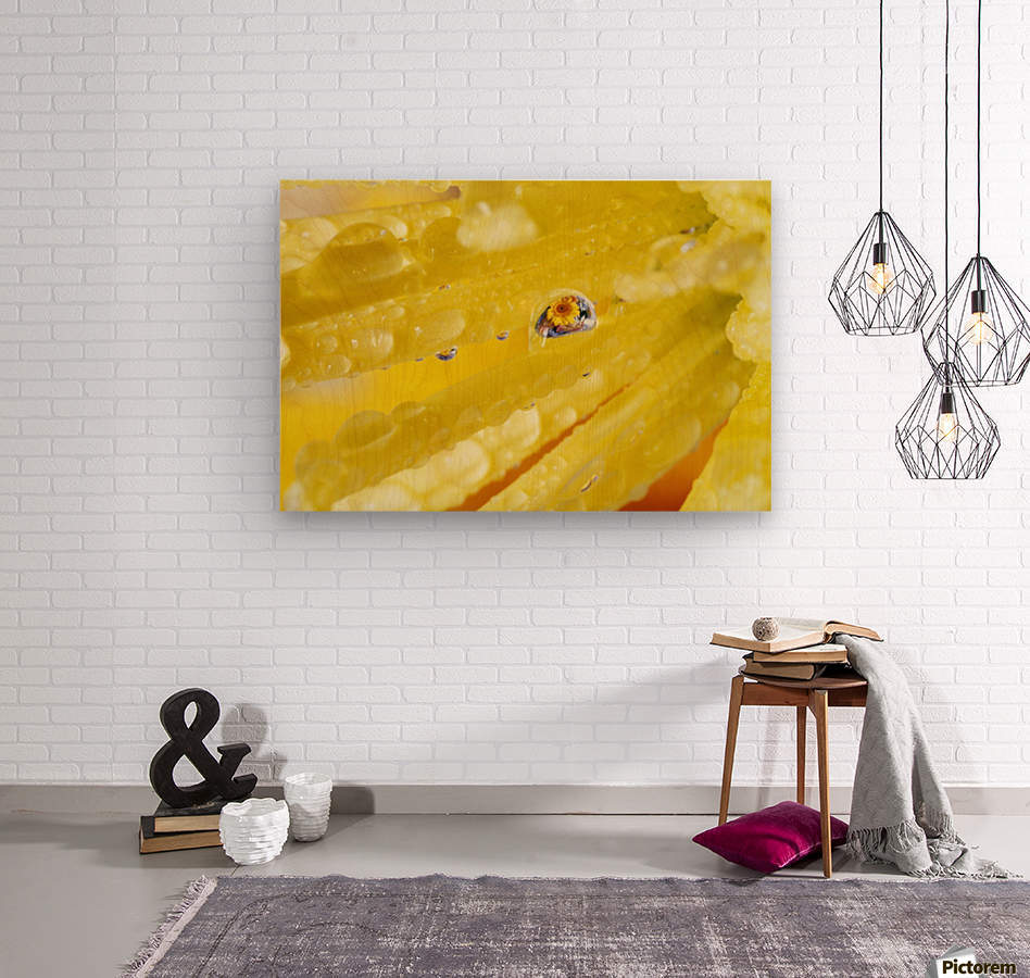 Yellow Flowers Reflected In Dew Drop  Wood print