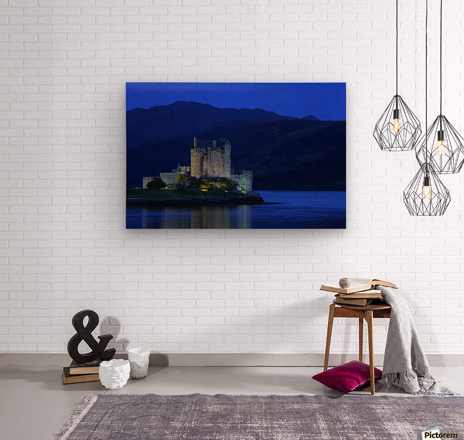 Castle In Scotland  Wood print