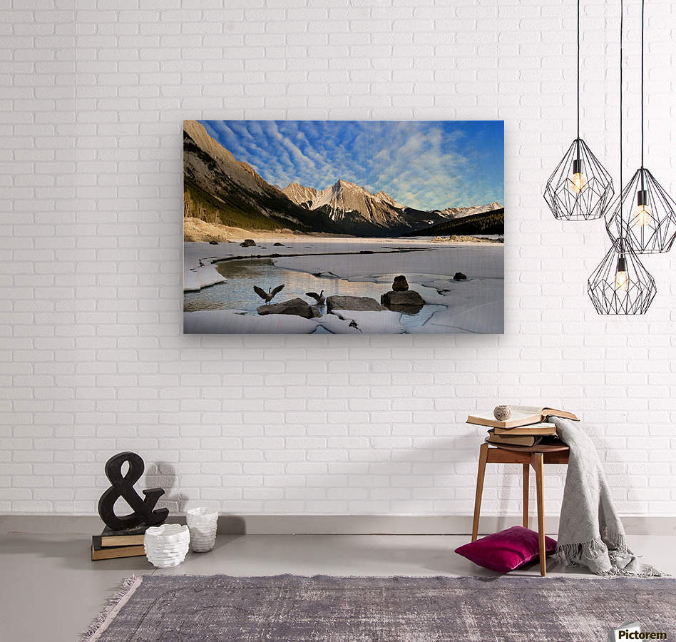 Medicine Lake, Jasper National Park, Alberta, Canada  Wood print