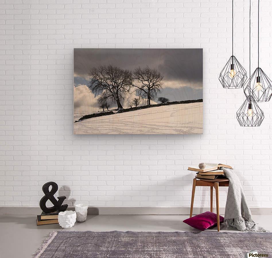 Snowy Field, Weardale, County Durham, England  Wood print