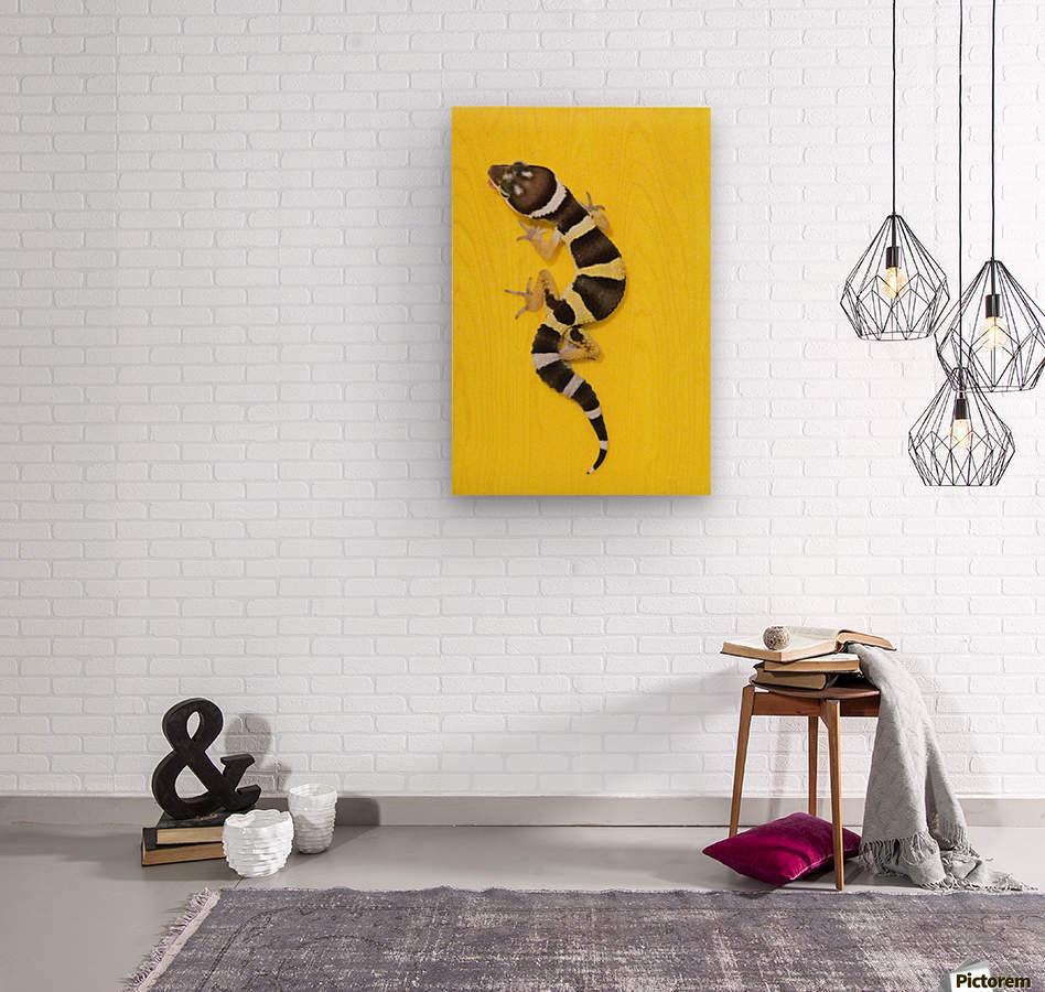 Baby Leopard Gecko On Yellow  Wood print