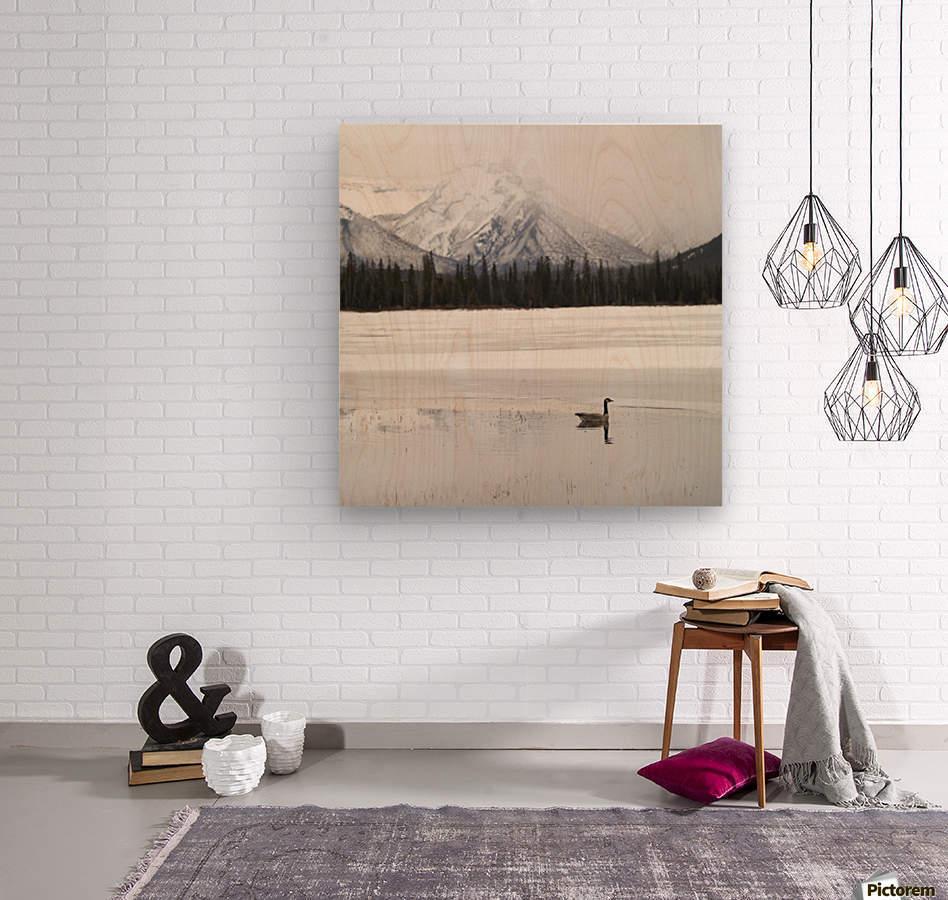 Winter Landscape, Banff National Park, Alberta, Canada  Wood print