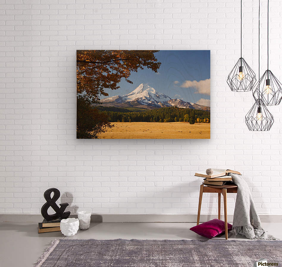 Mount Hood And Autumn Colours In Hood River Valley; Oregon, United States of America  Wood print