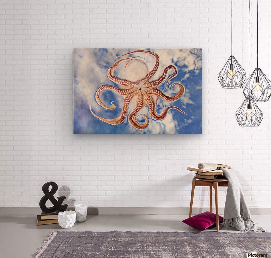 An octopus with blue sky and cloud in the background  Wood print