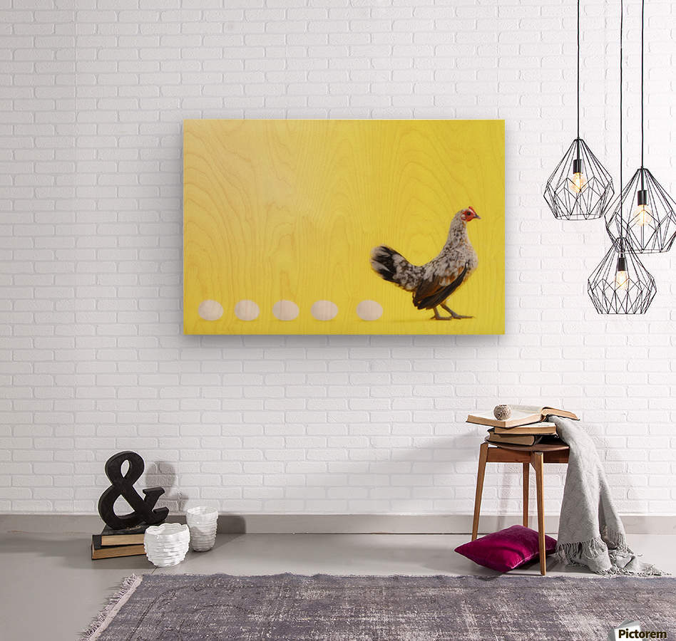 Hen standing in line with five eggs;British columbia canada  Wood print