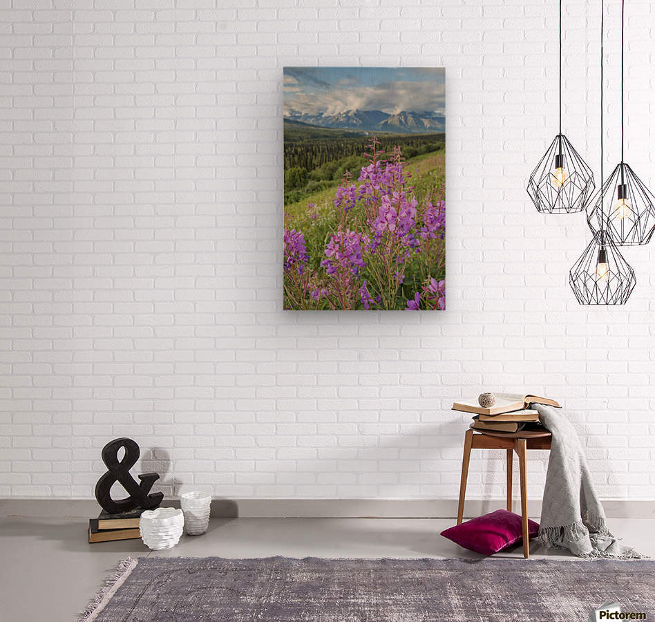 Scenic view of landscape near Palmer, Alaska, with Fireweed (Epilobium angustifolium) in the foreground, Southcentral Alaska, summer  Wood print