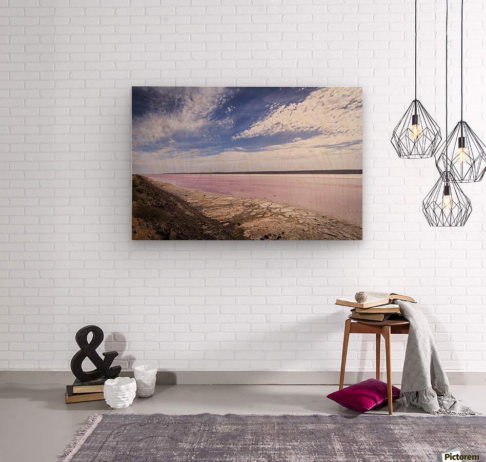 Pink Lake  Wood print