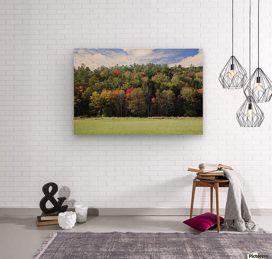 Colourful trees in autumn; Woodstock, Vermont, United States of America  Wood print