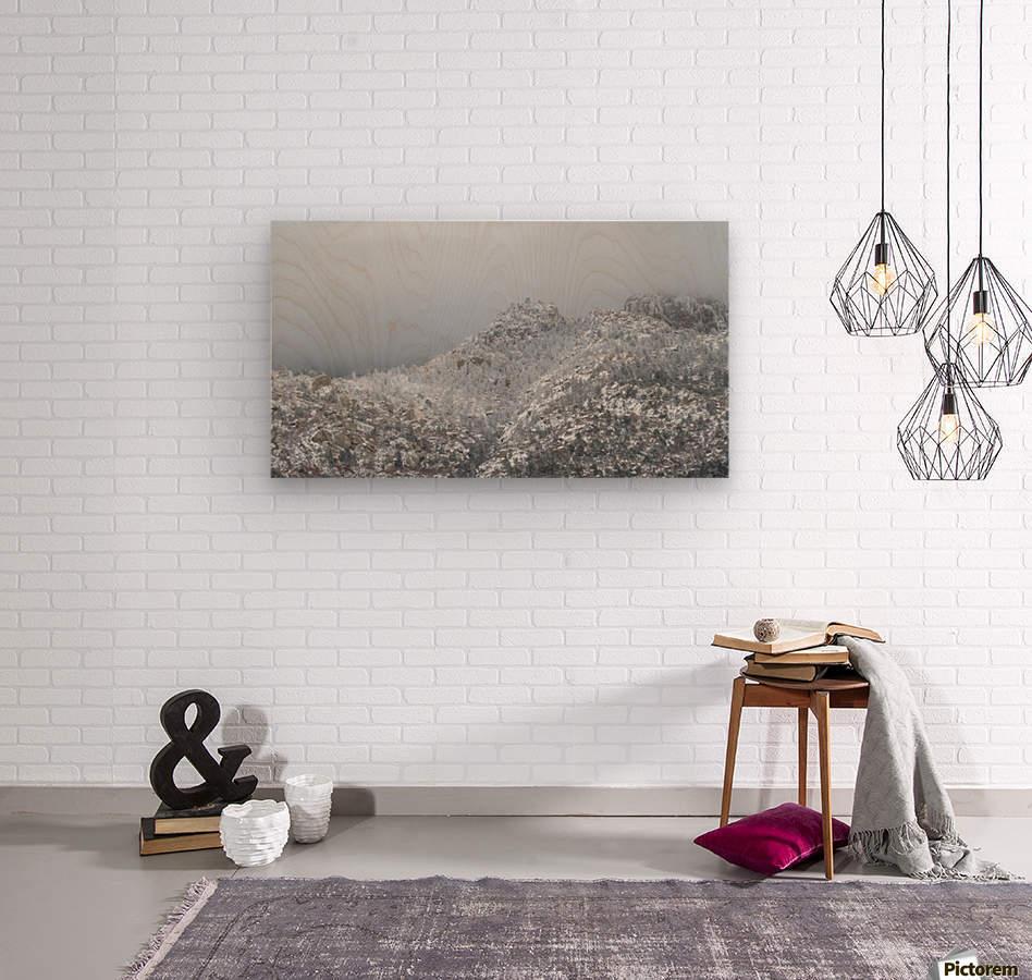 Sandia Mountains in Snow 1VP  Wood print