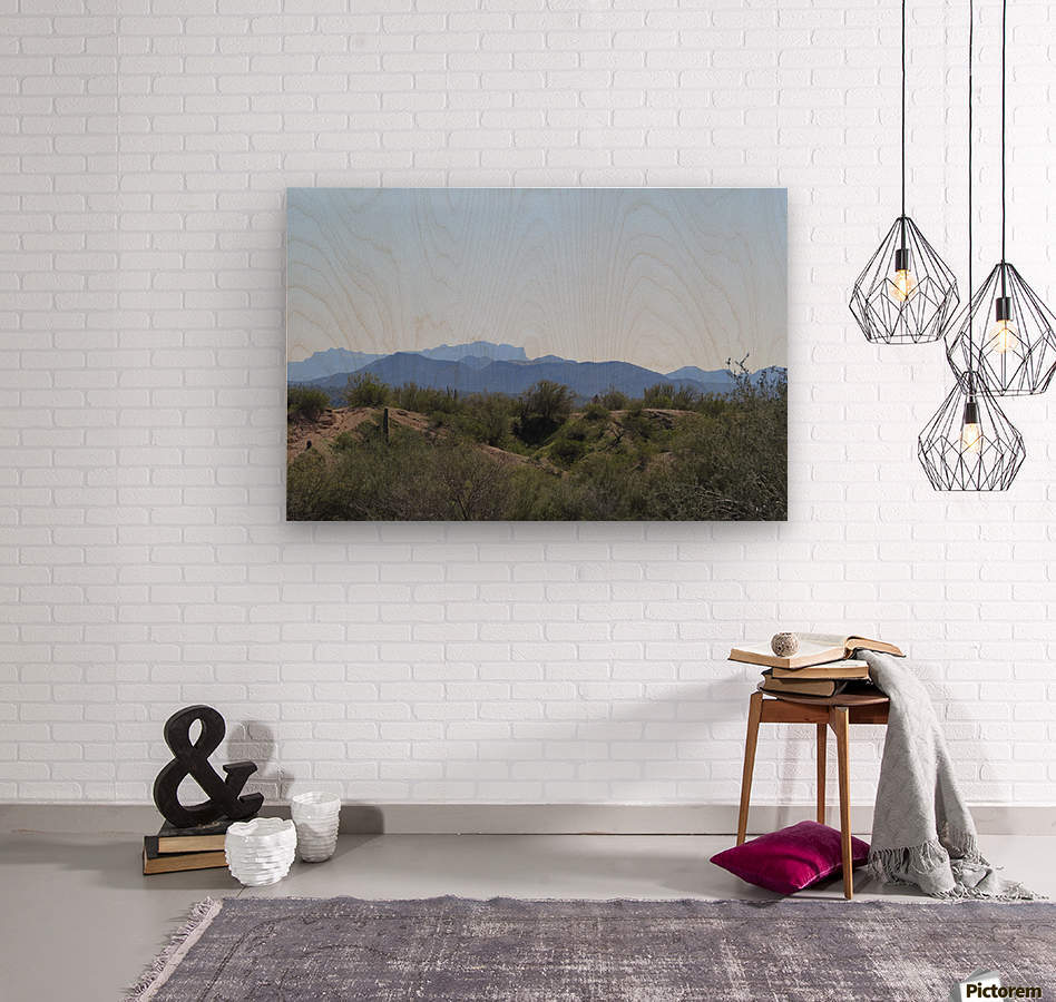 Tonto National Forest 1VP  Wood print