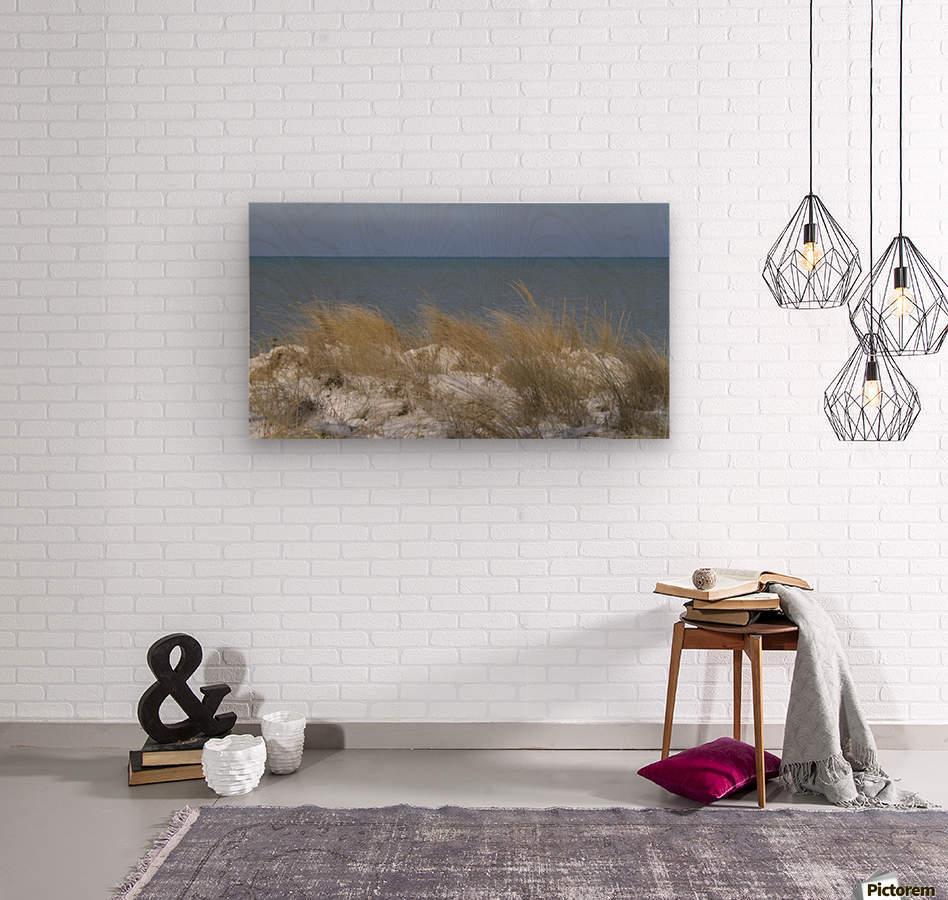 Gillson Beach in the Winter VP1  Wood print