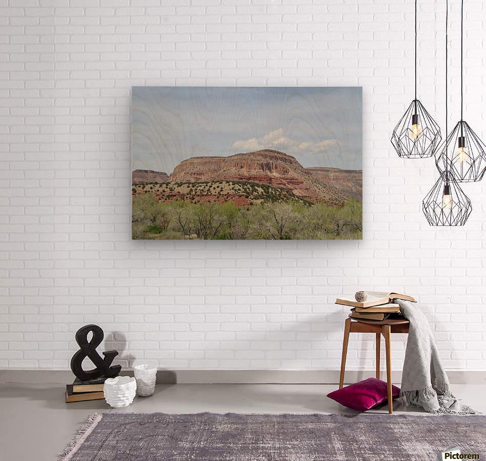 Jemez Mountains VP19  Wood print