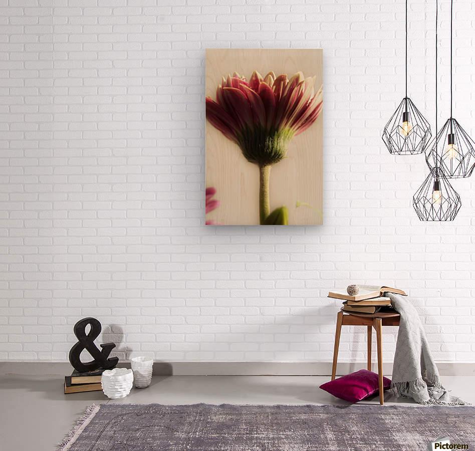 FPS-0075  Wood print