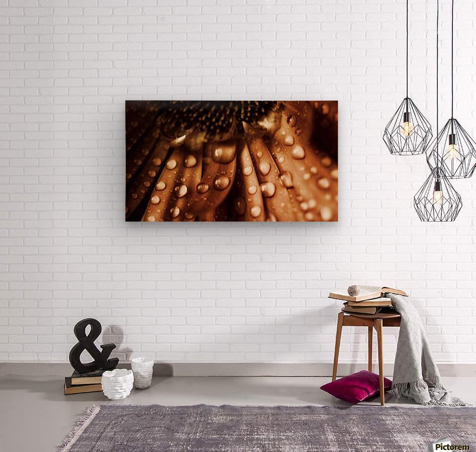 FPS-0079  Wood print