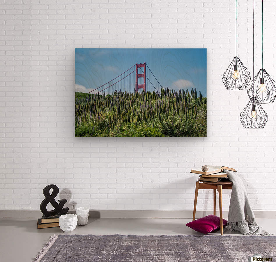 San Francisco Lupines  Wood print