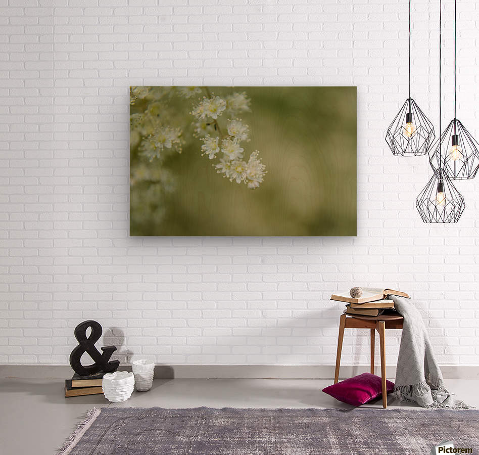 Oceanspray  Wood print