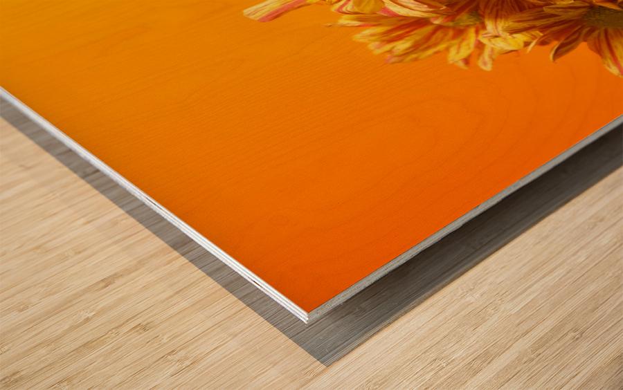 Orange scent Wood print