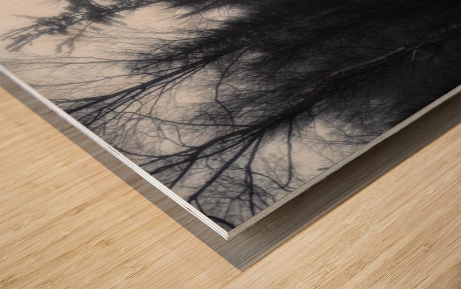 Slalom Wood print