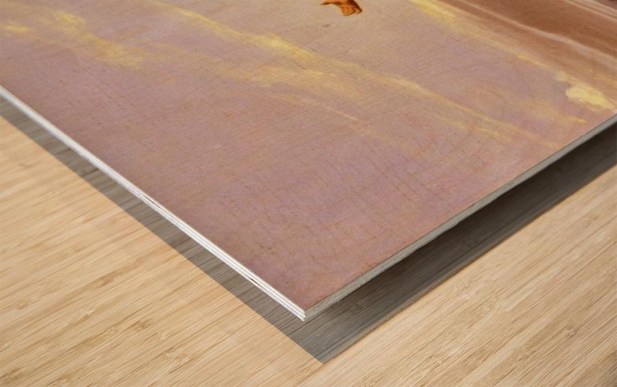 Demosthene practices Wood print