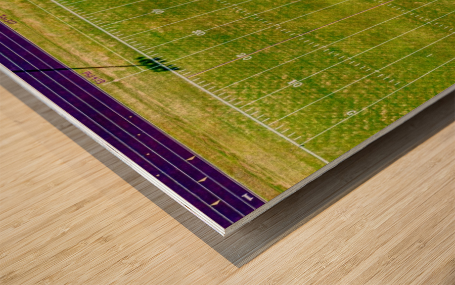 England, AR | Lions Football Field Wood print
