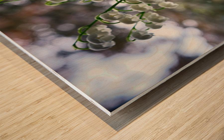 Thrush Flowers Wood print