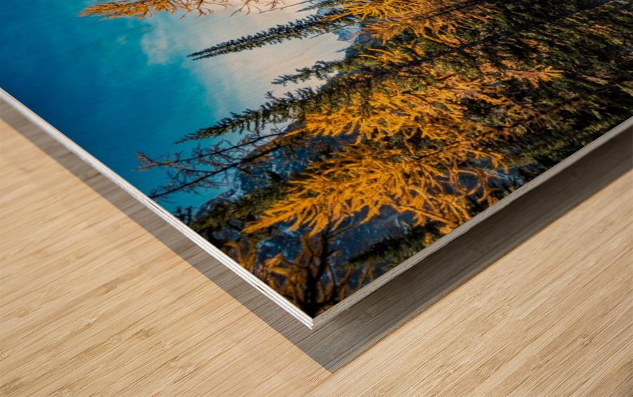Taylor Lake, Alberta Wood print