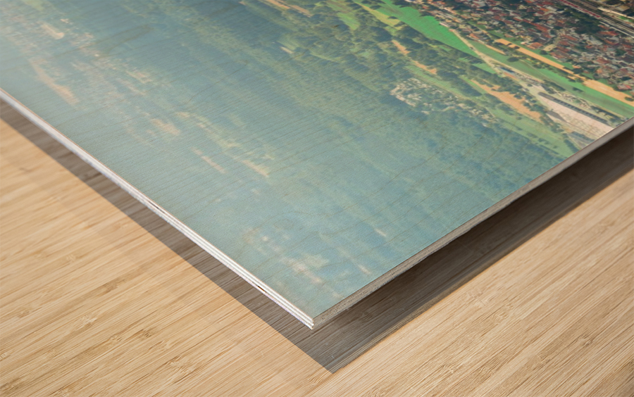 Airplain Wood print
