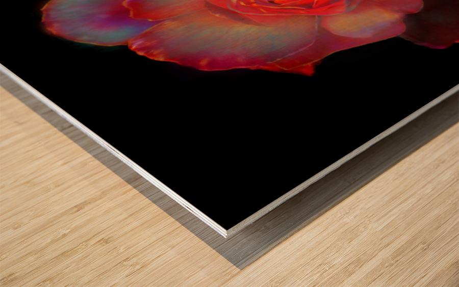 Gilded Rose Wood print