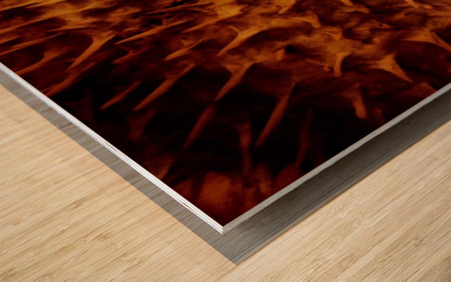 CURIOSITY - ORANGE Wood print