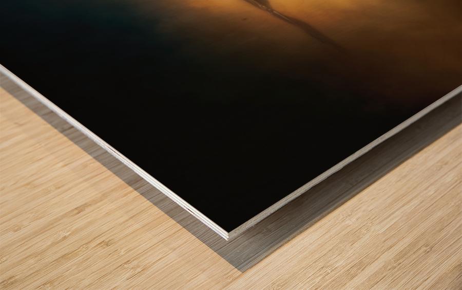 High Altitude Wood print