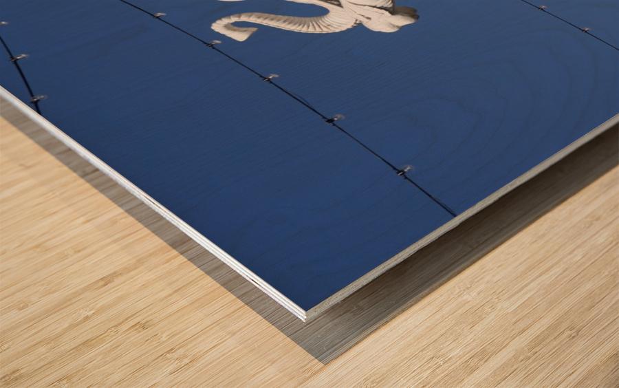 Hollywood Dancing Elephant Wood print