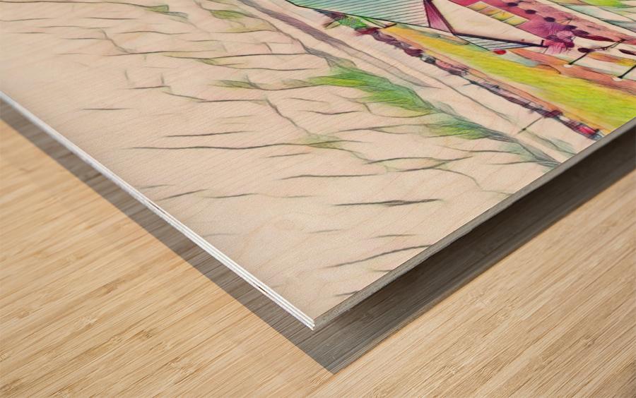 Vilonia Water 2 Wood print