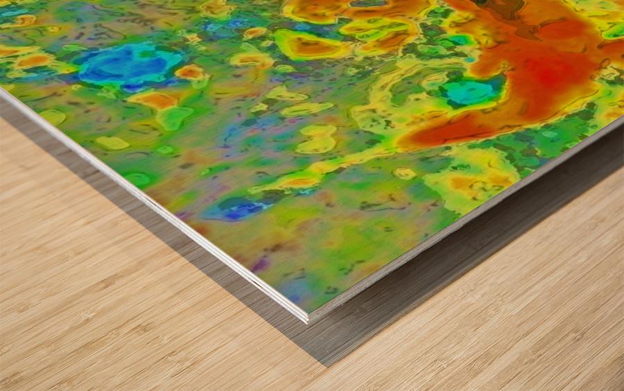 photo Koi Series  2 16 Wood print