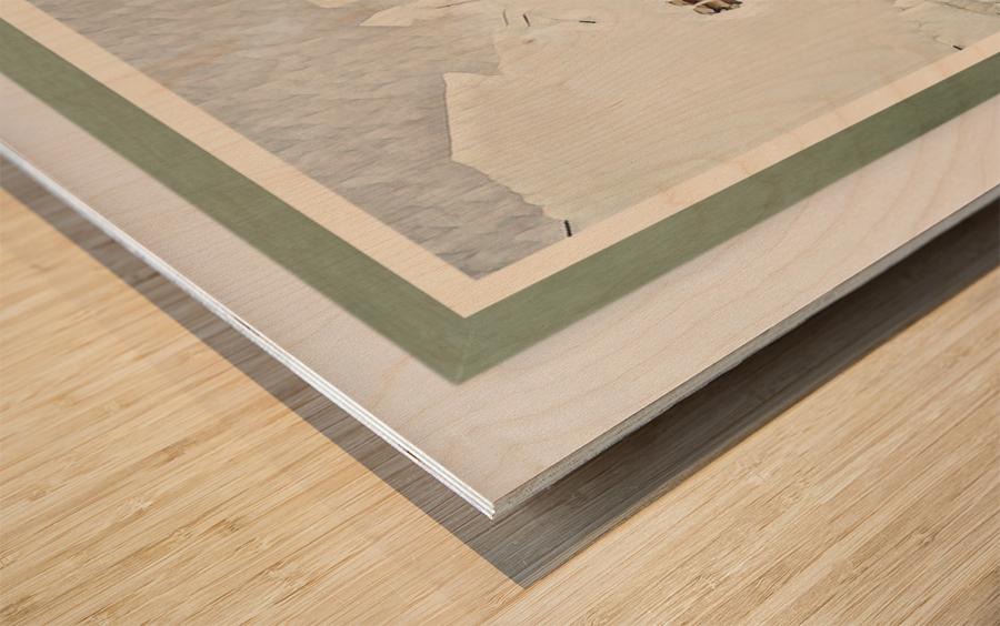 Roadrunner ng Bustillos Wood print