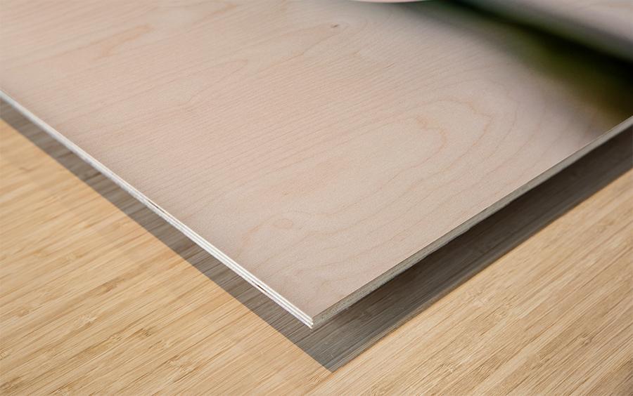 La pomme est dans le ver(re) Wood print