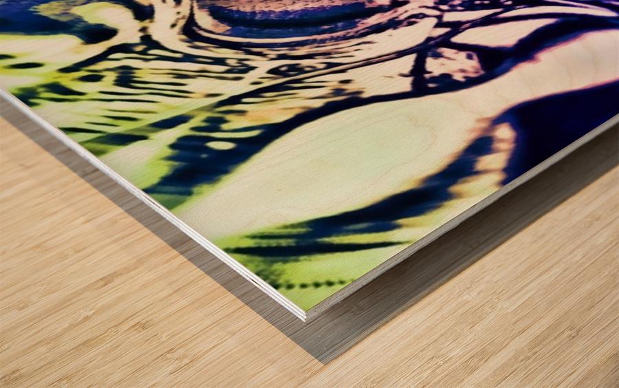 Cool Water  Wood print