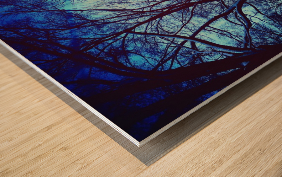 Snowy Delight Wood print