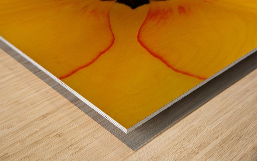 DSC00675 Wood print
