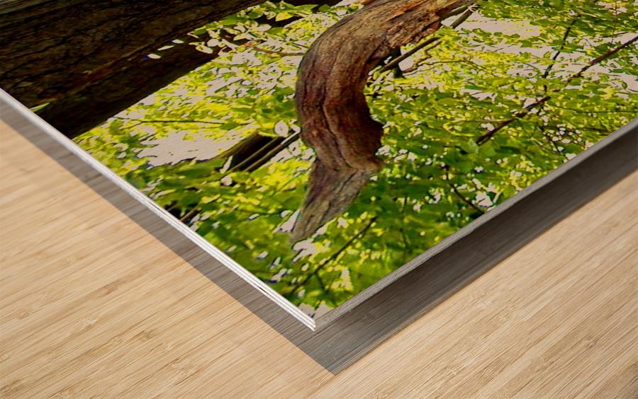 Wooden I   copy Wood print